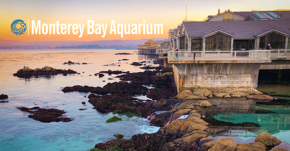 Monterey Bay Aquarium with ocean view
